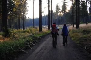 Wandern am Rennsteig