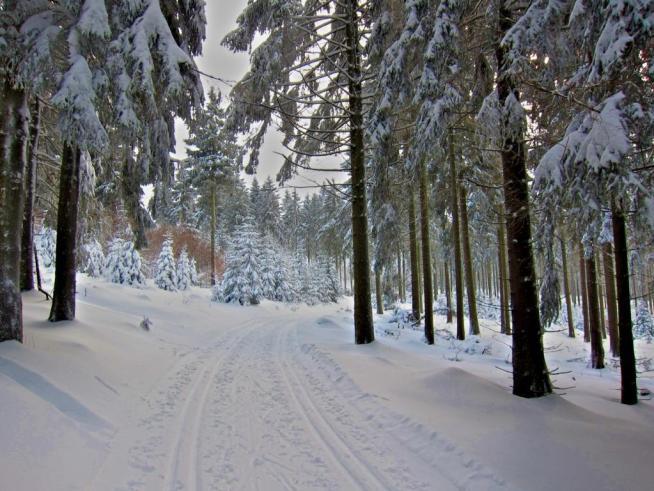 Rennsteig-Winter-Tambach-Dietharz-2017