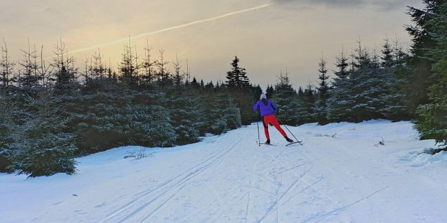 winter-rennsteig-thueringer-wald-ski-langlauf-tdaktiv