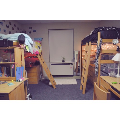 Medium Crop Of Loft Dorm Room Ideas