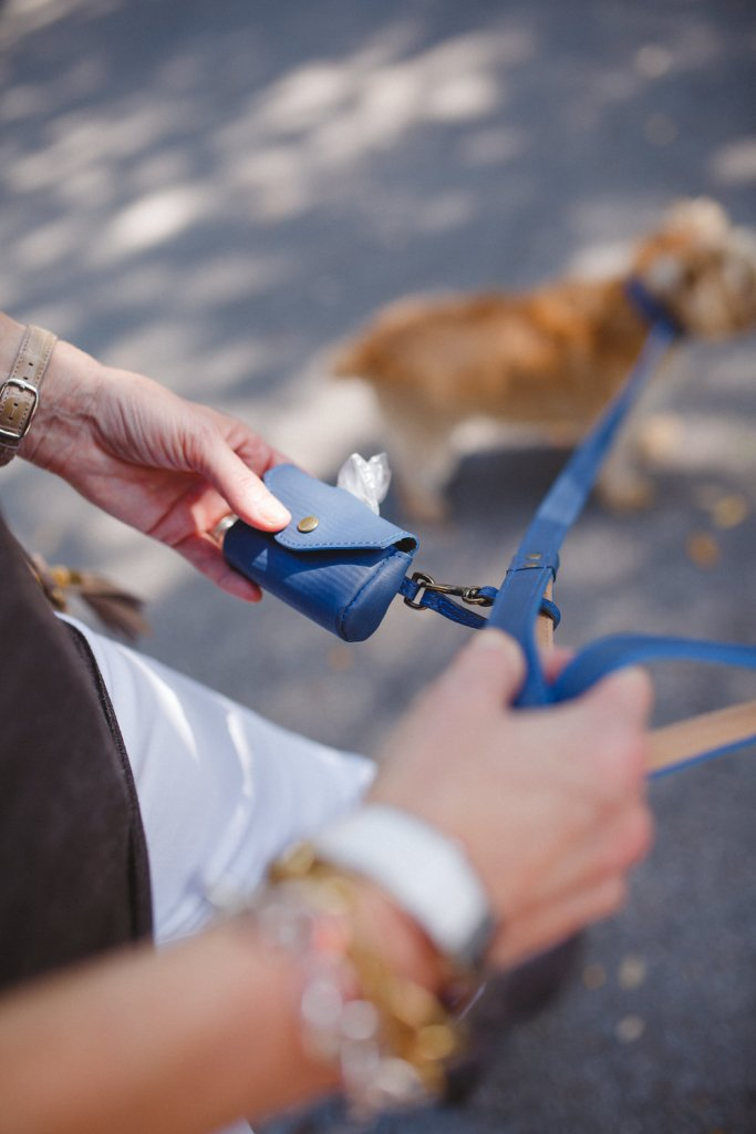 Dog leashes from Graphic Image and crossbody bag from GiGi New York on tanyafoster.com