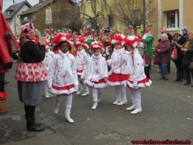 28.02.2014 - Karnevalszug Roesberg 60