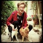 Raphaella Bilski My Street Cats