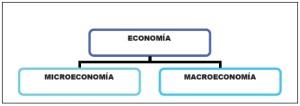División de la economia