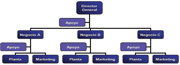Estructura organizacional de una empresa estratégica