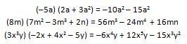 Multiplicación de un monomio por un polinomio