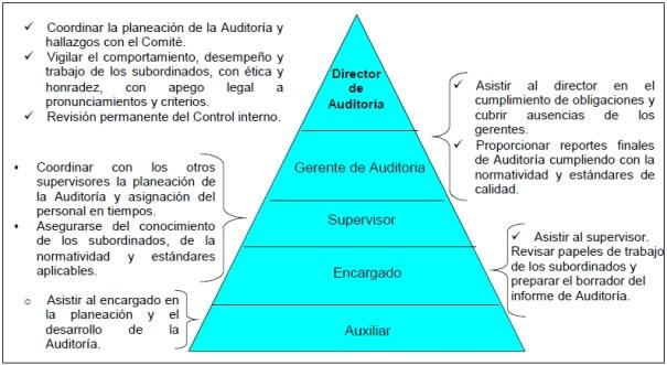Niveles jerárquicos de Auditoría y sus principales responsabilidades