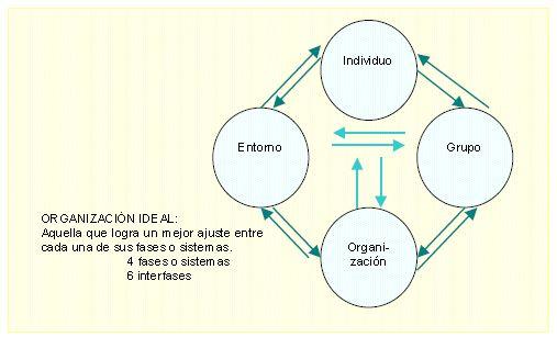 Organización ideal