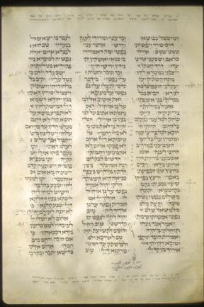 tglam310-32