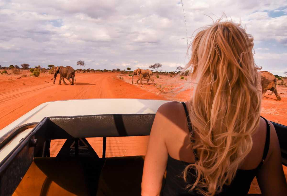 Safari w Kenii - ile kosztuje i jak je zorganizować - informacje praktyczne