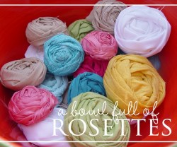 fabric+rosettes[1]