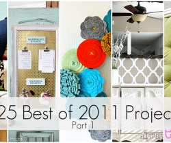 Great Ideas — 25 FABULOUS Projects of 2011