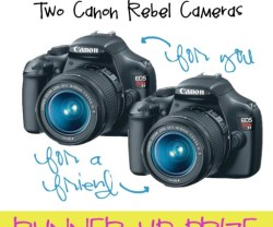 Extra Bonus Summer Giveaway — Win TWO Canon Rebel Cameras! (one for you and one for a friend)!