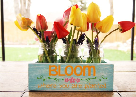 bloom planter