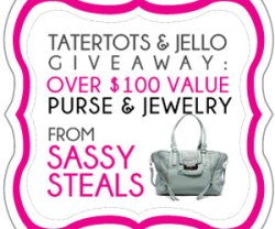 SASSY-STEALS-FEB-2014-GIVEAWAY