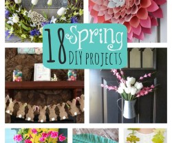18.spring.diy.projects