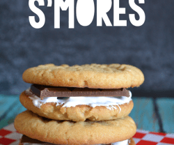 peanut-butter-cookie-smore_thumb[1]