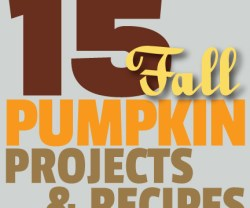 15-fall-pumpkin-ideas