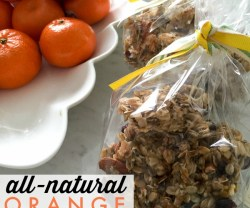 all-natural.orange.granola.recipe.tatertotsandjello.com
