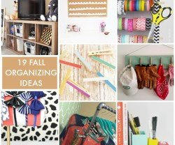 19 Fall Organizing Ideas