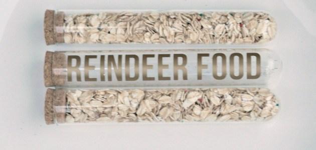 Modern-Reindeer-Food-tubes