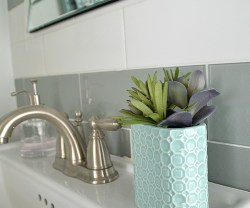 Turn a Toothbrush Holder into a Succulent Planter