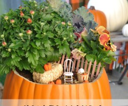 How to Make a Fall Fairy Garden!