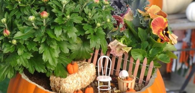 how-to-make-a-fall-fairy-garden-1-3