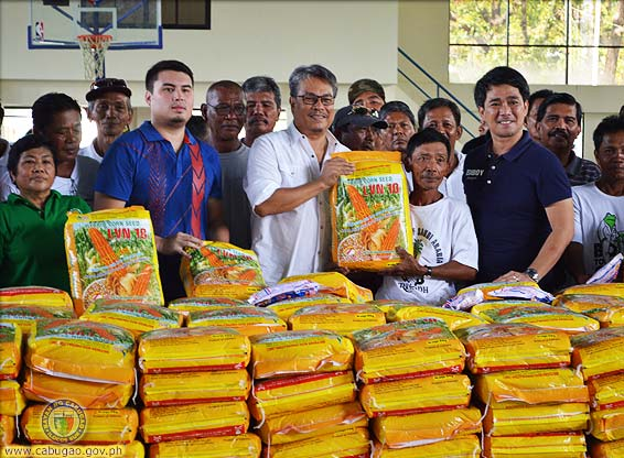 RYAN CORN SEEDS. Inyawat ni Vice Governor Deogracias Victor Savellano kada Mayor Edgar S. Cobangbang, Jr., (kanawan, sango) ken Vice Mayor Deogracias Jose Savellano (kannigid, sango) dagiti sinaksako a Ryan corn seeds (LVN 10) a pinaibunong ti gobierno probinsial nga idauluan ni Gov. Ryan Singson para kadagiti mannalon iti Cabugao. Dimmakkel ti produksion ti mais iti probinsia babaen ti Ryan Corn. (Retrato, pammadayaw ti LGU Cabugao).