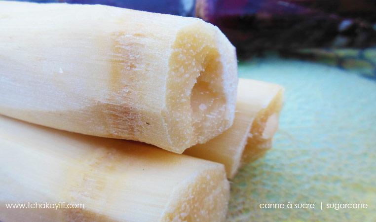 sugarcane-haiti-canneasucre