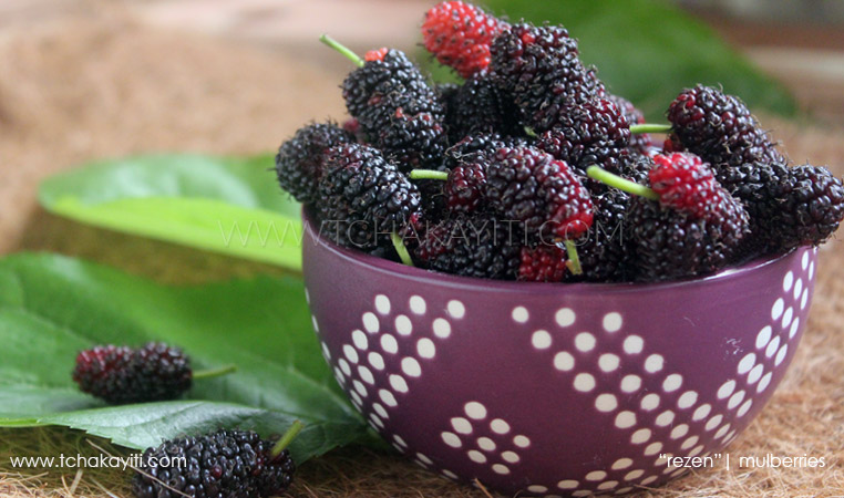 Rezen, mûres, mulberries - Fruits d'Haïti