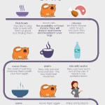 How To Feed Cats – The Real Way (Infographic)