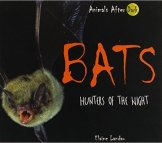 bats-hunters-of-the-night