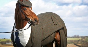 three-piece-tweed-horse-suit-emma-sandham-king-1