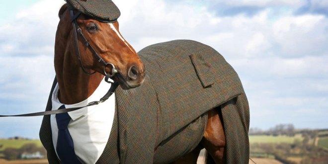 three-piece-tweed-horse-suit-emma-sandham-king-1