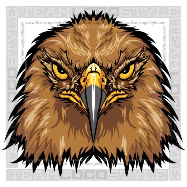 Falcon Graphic - Vector Mascot Image