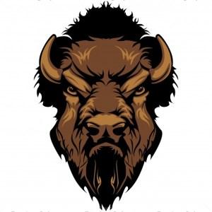 Buffalo Head Logo