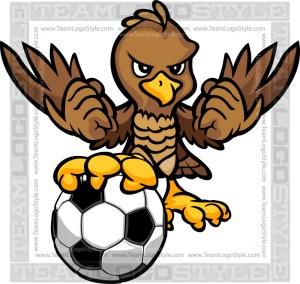 Hawk Soccer Logo