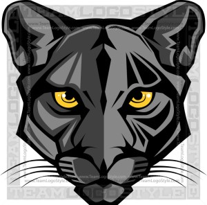 Panther Head Graphic
