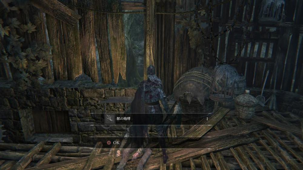 獣の咆哮 禁域の森 ブラッドボーン Bloodborne