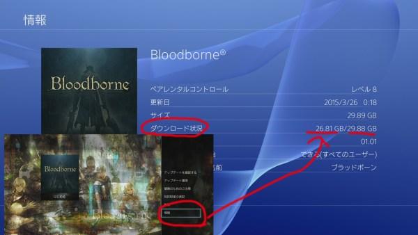 オンラインできない ブラッドボーン Bloodborne