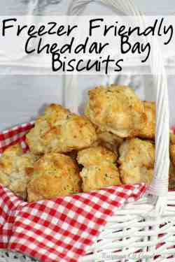 Distinguished Turn Delectable Family Cheddar Bay Biscuits Into A Freezerfriendly Version Goodness Freezer Friendly Cheddar Bay Biscuits Se Teaspoon