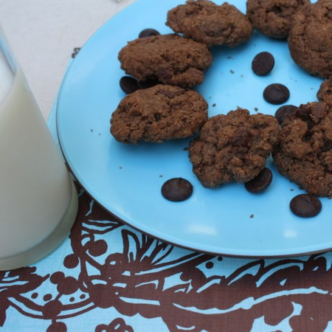 chocolate chocolate flax cookies