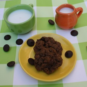 Double Chocolate Cookies with Flax
