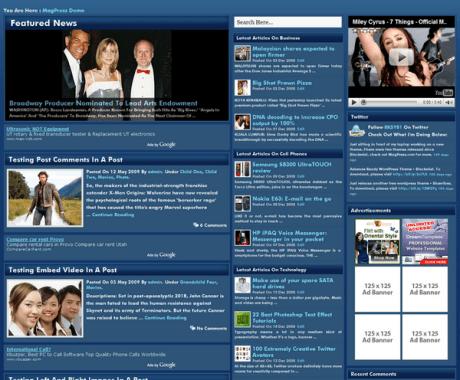 BlueFluid Wordpress Theme1 100+ Best Free Premium Wordpress Themes