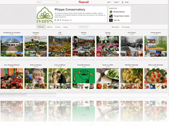 Pittsburgh's Phipps Conservatory is on Pinterest!