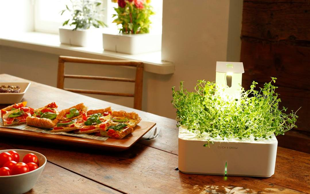 Click & Grow's New Grow Light Enables Smart Flower Pots to Spring up in Dark Places