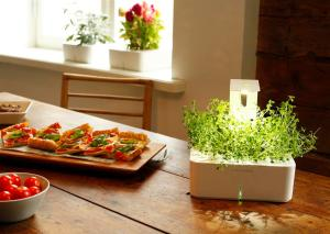 Smart Herb Garden1 Medium 300x213 Click & Grow's New Grow Light Enables Smart Flower Pots to Spring up in Dark Places