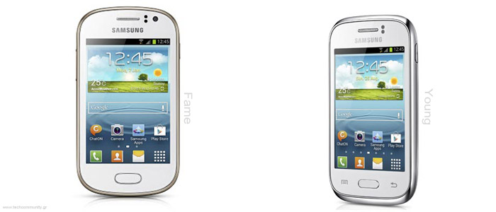 Samsung Galaxy Young + Fame