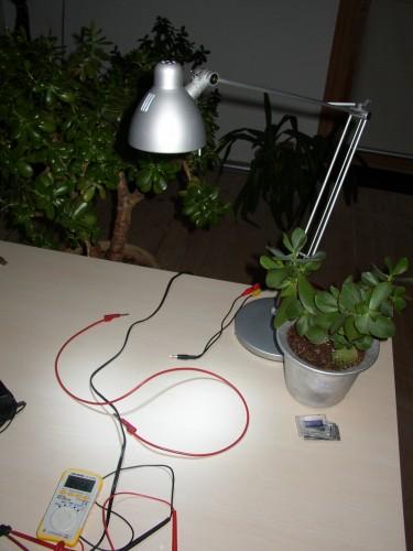 LED-lampe-3-watt-lyser-kraftigt